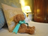 Letham-House-Teddy-Having-His-Afternoon-Nap