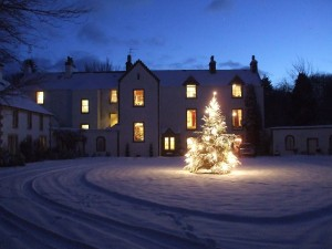 light-christmas-tree-in-front-of-letham-house